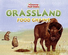 Cover: Grassland Food Chains