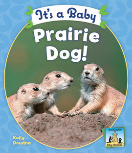Cover: It's a Baby Prairie Dog