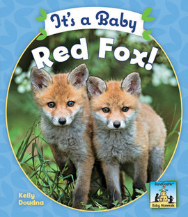Cover: It's a Baby Red Fox