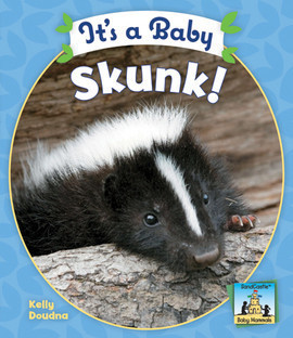 Cover: It's a Baby Skunk