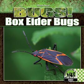 Cover: Box Elder Bugs