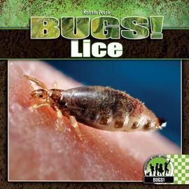 Cover: Lice