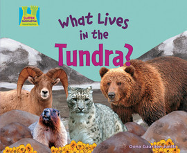Cover: What Lives in the Tundra?