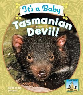 Cover: It's a Baby Tasmanian Devil!