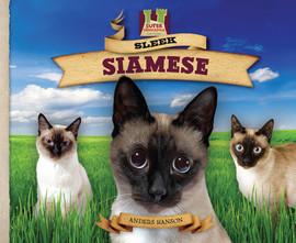 Cover: Sleek Siamese