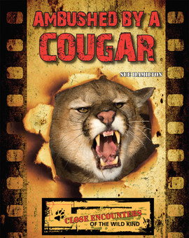 Cover: Ambushed by a Cougar