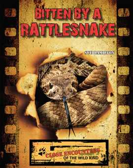 Cover: Bitten by a Rattlesnake