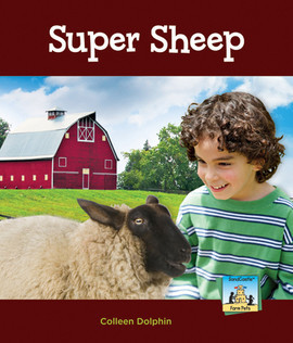 Cover: Super Sheep