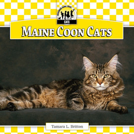 Cover: Maine Coon Cats