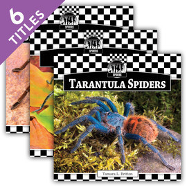Cover: Spiders Set 1