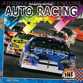 Cover: Dropping the Flag: Auto Racing