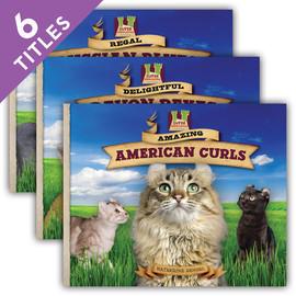 Cover: Cat Craze Set 2