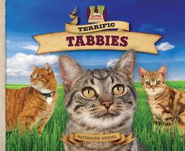 Cover: Terrific Tabbies