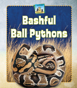 Cover: Bashful Ball Pythons