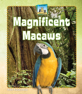 Cover: Magnificent Macaws
