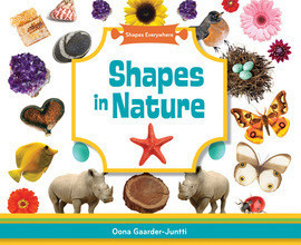 Cover: Shapes in Nature