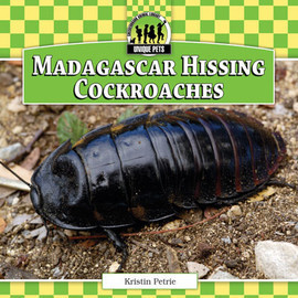 Cover: Madagascar Hissing Cockroaches