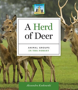 Cover: Herd of Deer: Animal Groups in the Forest