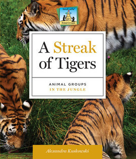 Cover: Streak of Tigers: Animal Groups in the Jungle