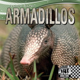 Cover: Armadillos