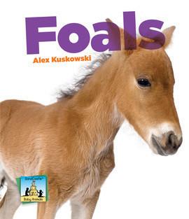 Cover: Foals