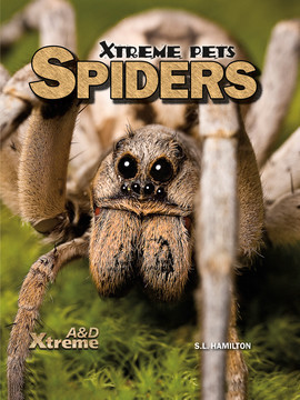 Cover: Spiders