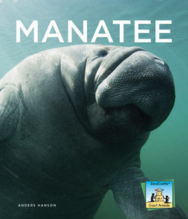Cover: Manatee