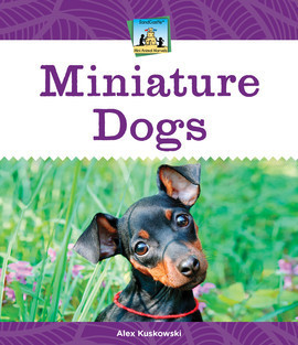 Cover: Miniature Dogs