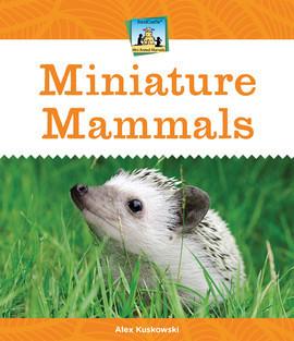 Cover: Miniature Mammals