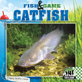 Cover: Catfish