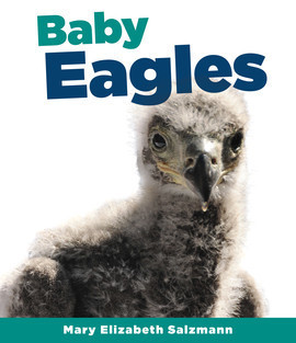 Cover: Baby Eagles
