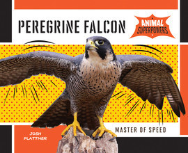 Cover: Peregrine Falcon: Master of Speed