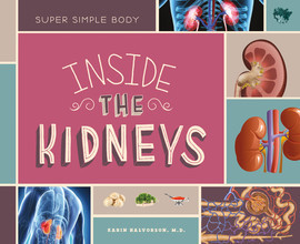 Cover: Inside the Kidneys