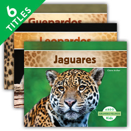Cover: Grandes felinos (Big Cats) (Spanish Version)