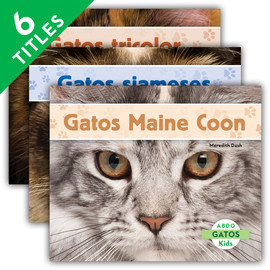 Cover: Gatos (Cats Set 1)
