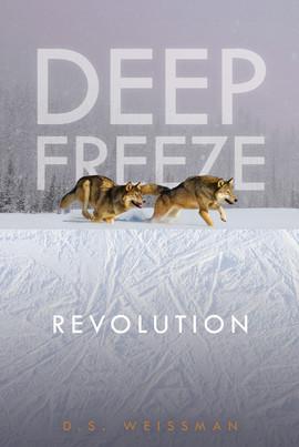 Cover: Revolution #4