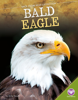 Cover: Bald Eagle