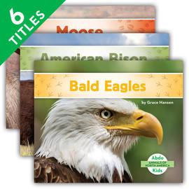 Cover: Animals of North America