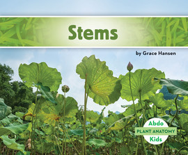 Cover: Stems