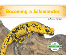 Cover: Becoming a Salamander