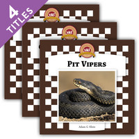 Cover: Snakes Set 2