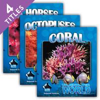 Cover: Underwater World Set 1