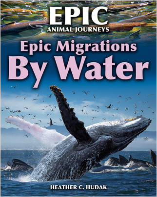 Cover: Epic Migrations by Water