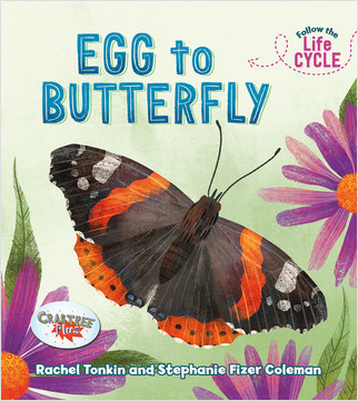 Cover: Egg to Butterfly