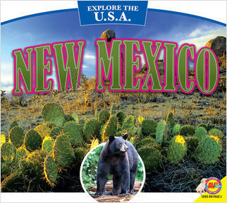 Cover: New Mexico