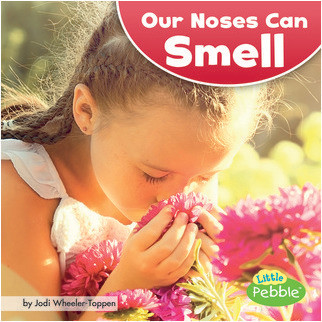 Cover: Our Noses Can Smell