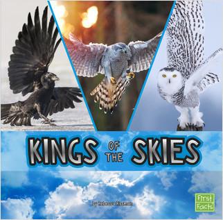 Cover: Kings of the Skies