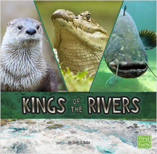 Cover: Kings of the Rivers
