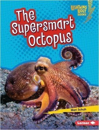 Cover: The Supersmart Octopus