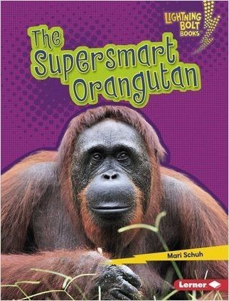 Cover: The Supersmart Orangutan